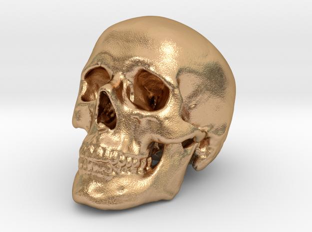 Skull Scientific 62mm in Natural Bronze