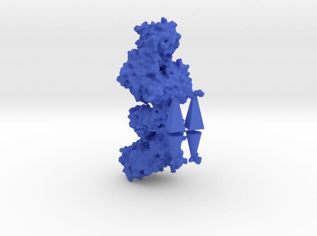 Human Hexokinase I - Allosteric regulation model in Blue Processed Versatile Plastic