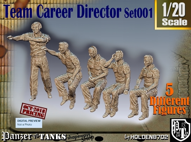 1/20 team career director Set001 in White Natural Versatile Plastic