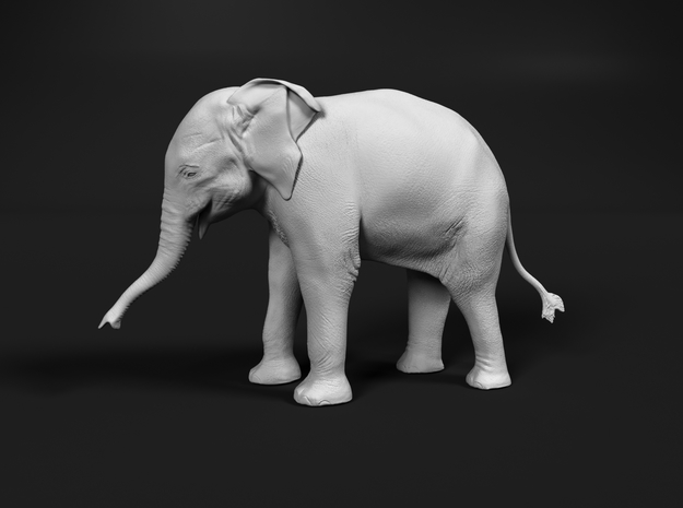 Indian Elephant 1:48 Standing Female Calf in Smooth Fine Detail Plastic