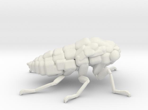 Cicada! The Somewhat Smaller Square-ish Sculpture in White Natural Versatile Plastic