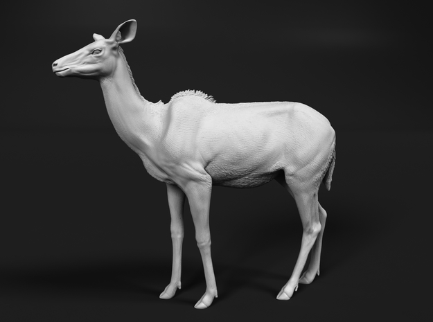 Greater Kudu 1:25 Chewing Female in White Natural Versatile Plastic