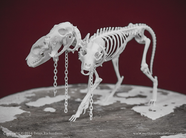Cerberus Skeleton