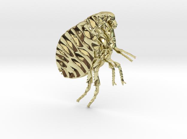 Flea in 18K Yellow Gold: Medium