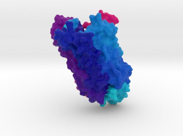 Encephalopsin Protein in Natural Full Color Sandstone