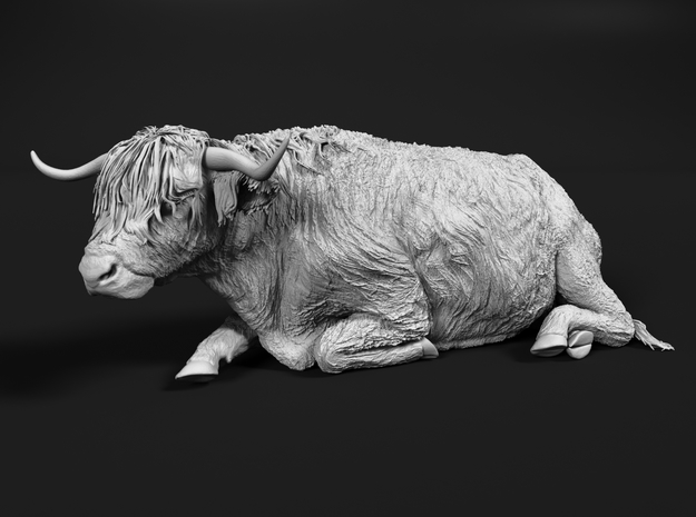 Highland Cattle 1:25 Lying Female in White Natural Versatile Plastic
