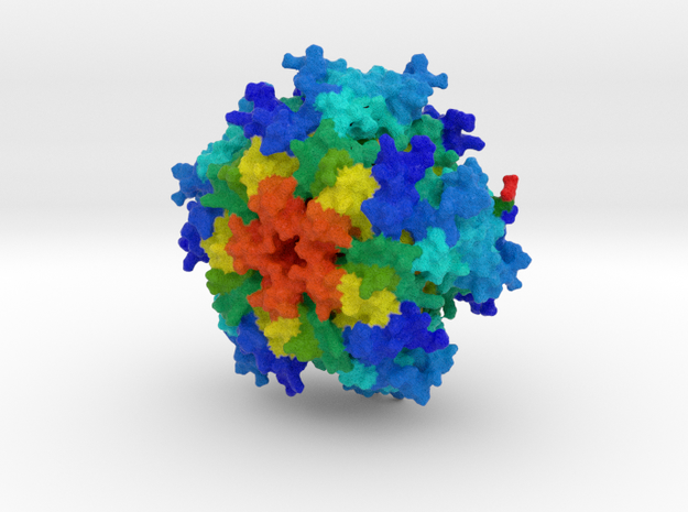 GTP Cyclohydrolase I in Natural Full Color Sandstone