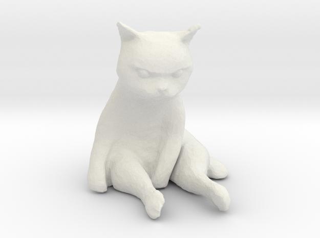 1/18 Grumpy Cute Cat Sitting in White Natural Versatile Plastic