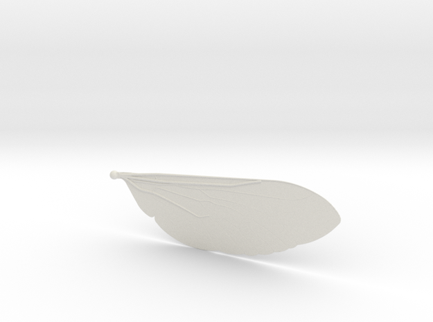 Tabanus in White Natural Versatile Plastic