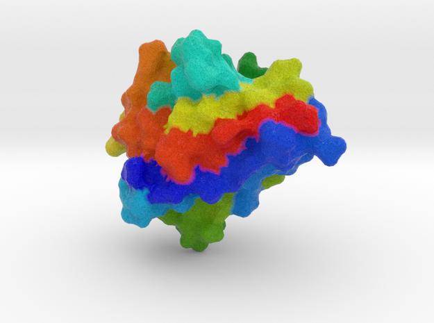 Single Domain Antibody (sdAb) in Natural Full Color Sandstone