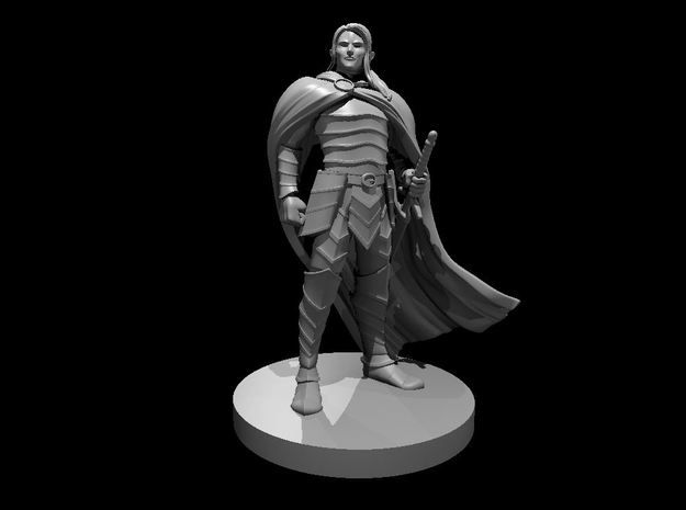 Elven Male Paladin in Smooth Fine Detail Plastic