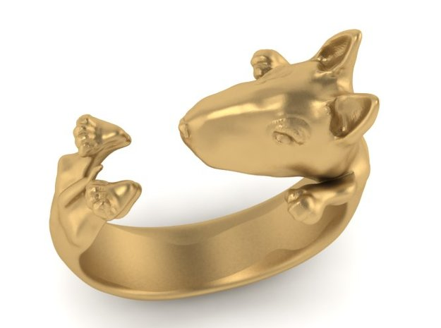 Bull Terrier Dog ring
