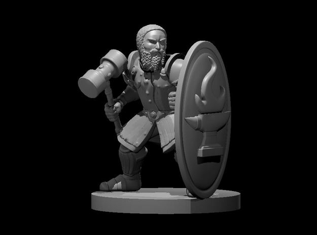 Dwarf Fighter w Tower Shield n Hammer in Smooth Fine Detail Plastic
