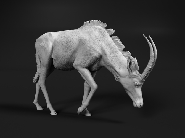 Sable Antelope 1:25 Female with head down in White Natural Versatile Plastic