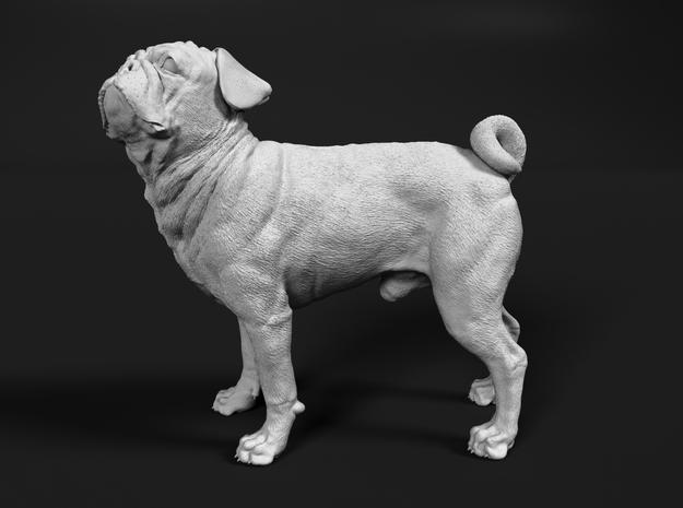 Pug 1:20 Standing Male in White Natural Versatile Plastic