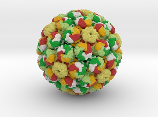 Merkel Cell Polyomavirus in Natural Full Color Sandstone