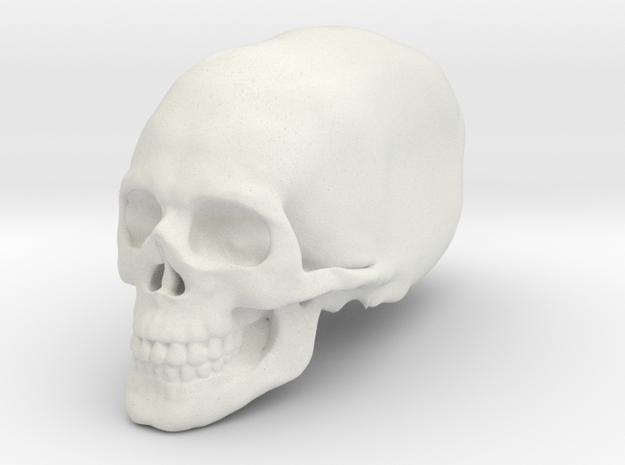 Elongated skull in White Natural Versatile Plastic
