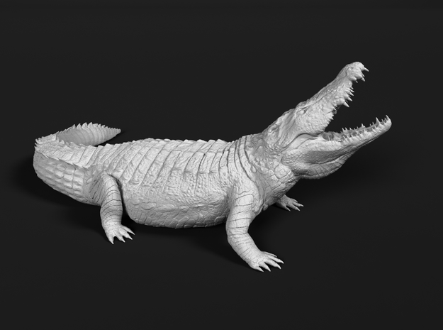Nile Crocodile 1:48 Lifted head with mouth open in White Natural Versatile Plastic