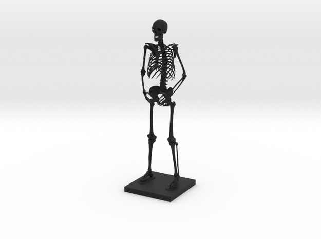"10"" Desktop Skeleton 3d printed"