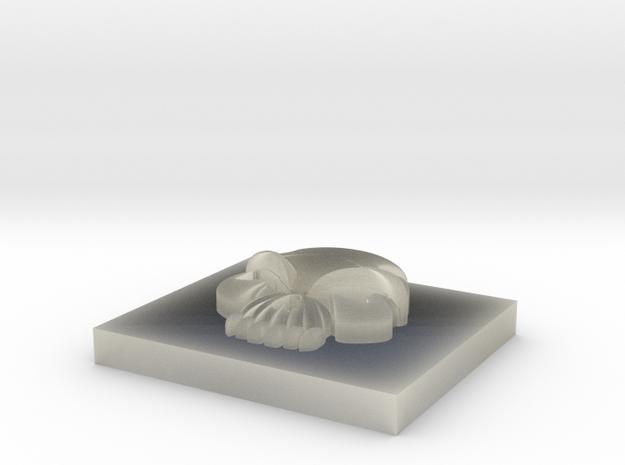 5.5 Skull in Transparent Acrylic