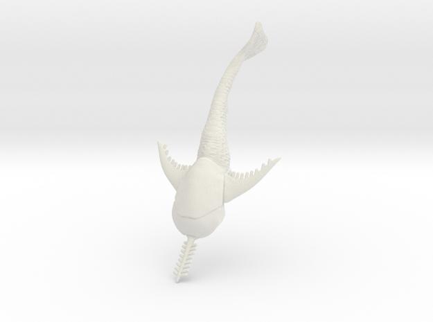 DORYASPIS 8 in White Natural Versatile Plastic