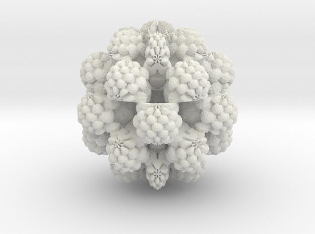 Juliabulb sqrtz^6 in White Natural Versatile Plastic