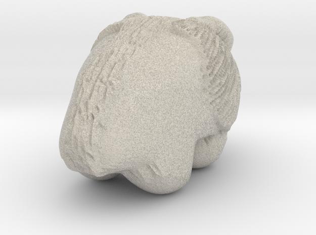 Bison Print in Sandstone