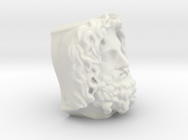 Head Of Serapis in White Natural Versatile Plastic