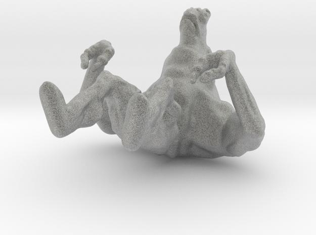 The turtle Hermit 3d printed