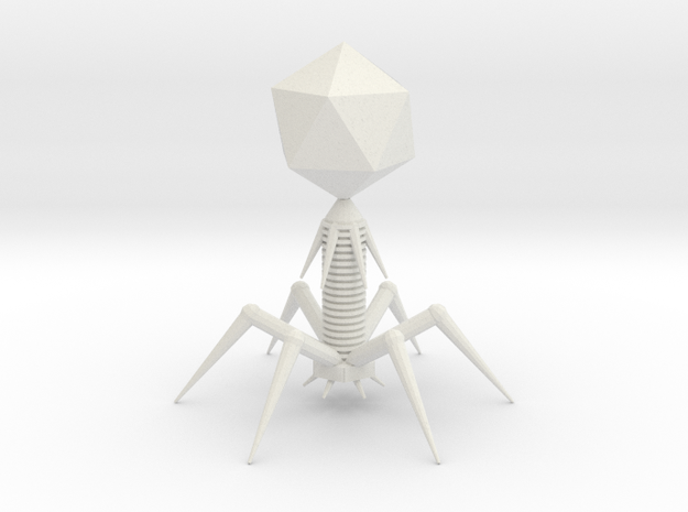 Bacteriophage T7 Model in White Natural Versatile Plastic