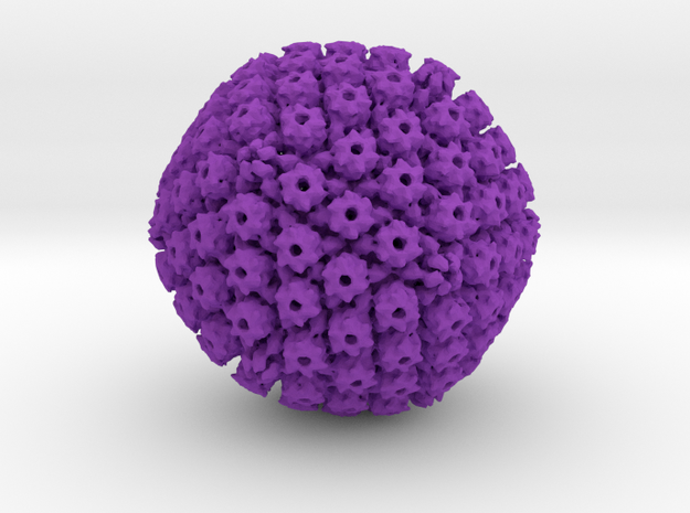 Herpes Simplex Capsid 800k x magnification 3d printed