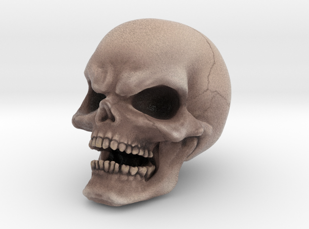 COLOR Evil Skull in Full Color Sandstone