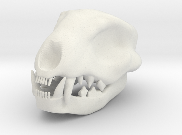 Cat Skull 3 Inches in White Natural Versatile Plastic