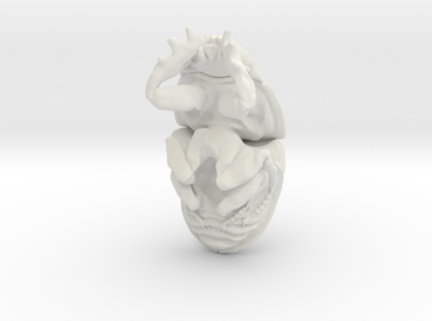 Dung Beetle Pendant 2.4cm - style 2 3d printed
