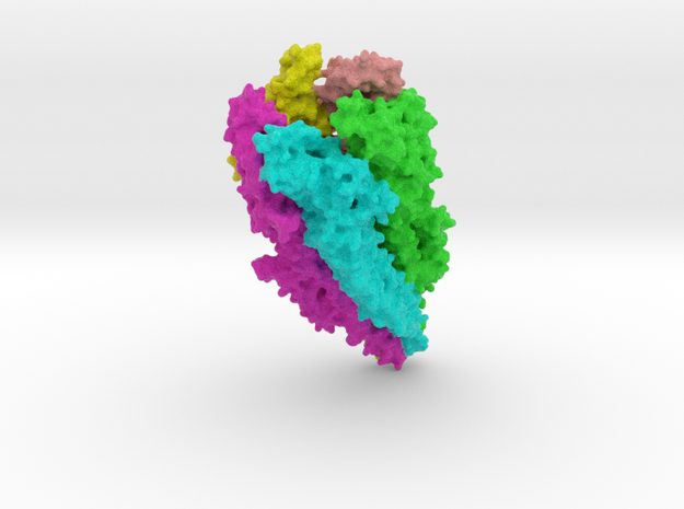 Acetylcholine Receptor in Full Color Sandstone