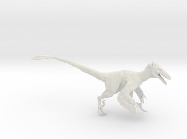 Deinonychus antirrhopus 1:15 scale model in White Natural Versatile Plastic