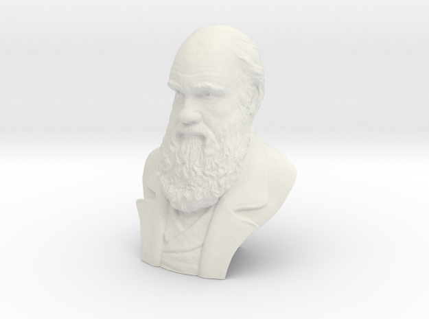 """Charles Darwin 6"""" Bust in White Strong & Flexible"""