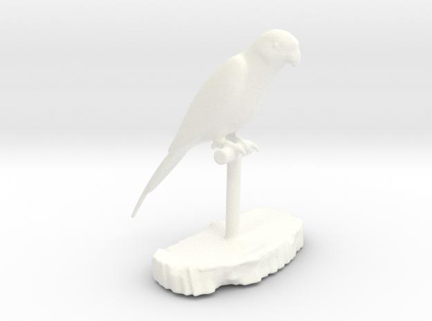 Bird Beauty Lorikeet Full Color by Space 3D
