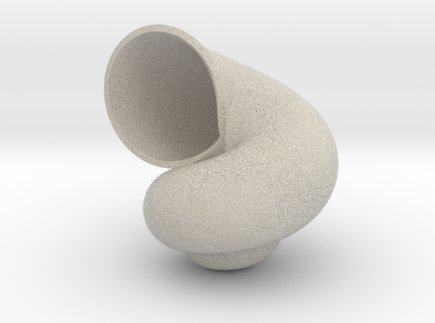 Sea Shell in Natural Sandstone