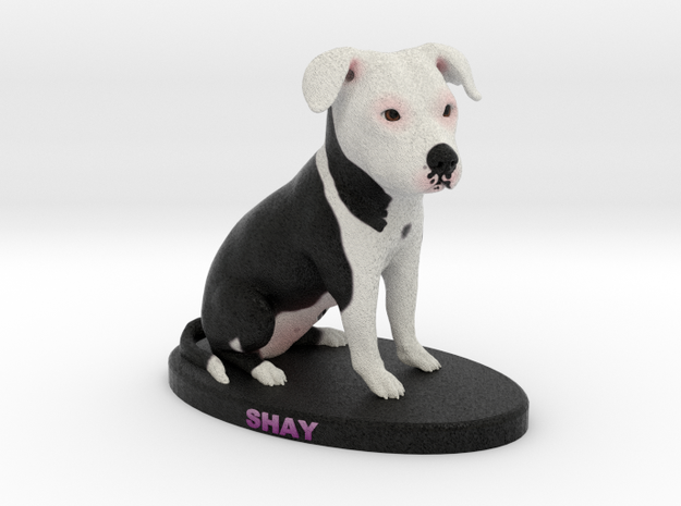 Custom Dog Figurine - Shay in Full Color Sandstone