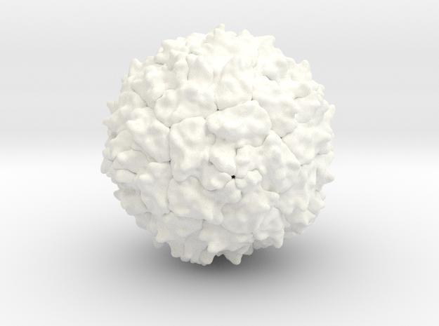 Polio Virus - 2 Million X in White Processed Versatile Plastic