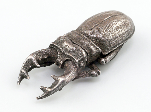 Stag Beetle 3d printed Stainless Steel