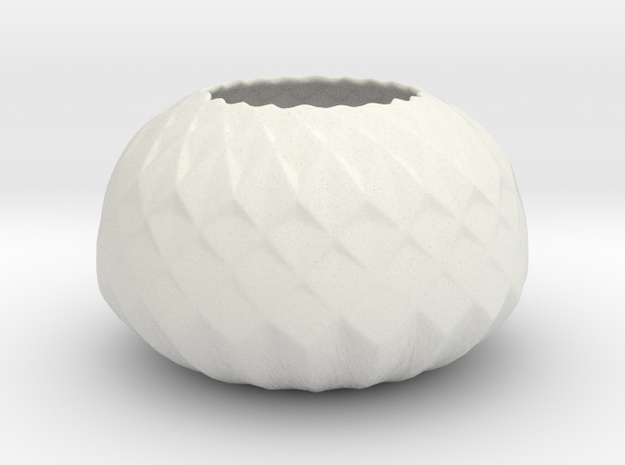 Protea Planter in White Natural Versatile Plastic
