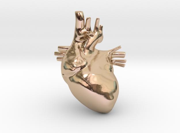 Anatomical Heart Hanger Pendant