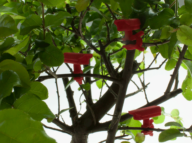 Bonsai surveillance kit - CCTV in Red Strong & Flexible Polished