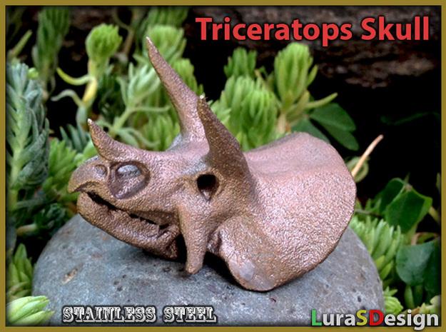 Triceratops Dinosaur Skull 3d printed Stainless Steel print