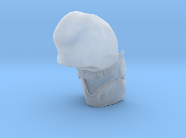 Subject 4c | Tongue + Thyroid + Hyoid + Epiglottis in Smooth Fine Detail Plastic