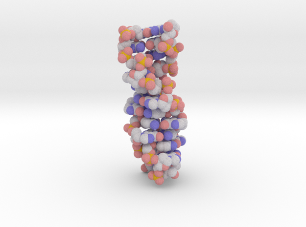 Z-DNA in Full Color Sandstone
