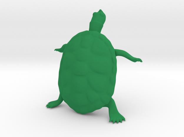 The Wondering Turtle in Green Processed Versatile Plastic