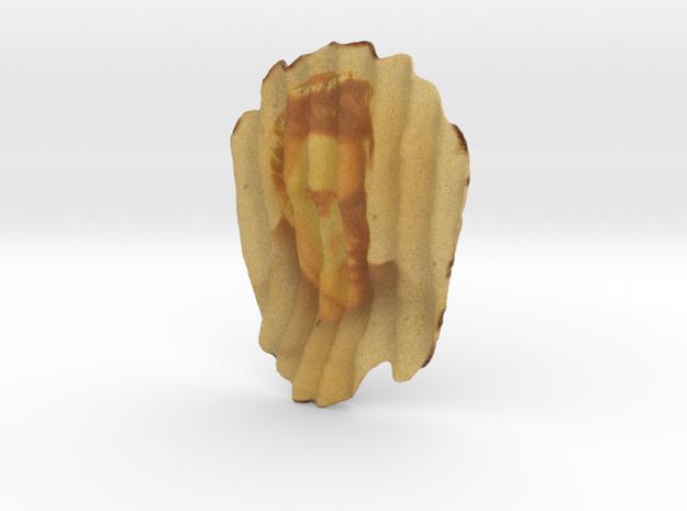 Elvis Chip in Full Color Sandstone